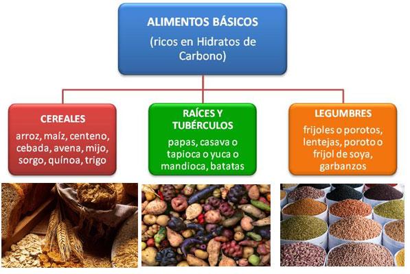Caracter sticas y propiedades parte 1 - Alimentos hidratos de carbono ...