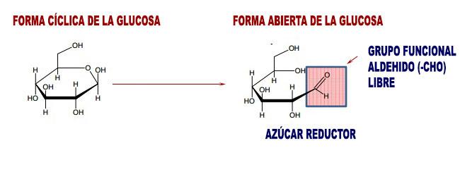 Caracter sticas y propiedades parte 1 for Cocina molecular definicion